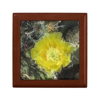 Fin de fleur de jaune de figue de Barbarie Coffrets Cadeaux