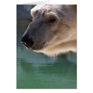 Fin d'ours blanc vers le haut de portrait carte