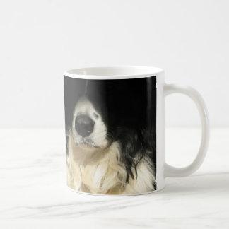 Fin du nez de chien vers le haut de tasse