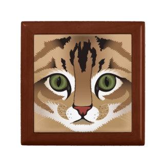 Fin mignonne de visage de chat tigré vers le haut coffret cadeau