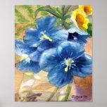 Fin U d'aquarelle de pavot bleu Poster