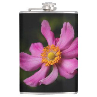 """Flasques Fleur japonaise d'anémone de """"Prinz Heinrich"""" de"""