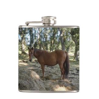 Flasques Je veux un cheval