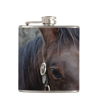 Flasques Photo de cheval