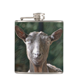 Flasques Vieille chèvre belle