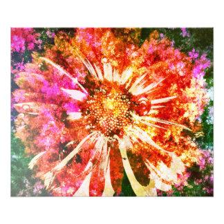 Fleur Photographies