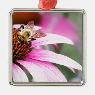 Fleur pourpre de cône avec l'abeille ornement carré argenté