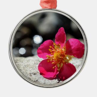 Fleur rose de mystère ornement rond argenté