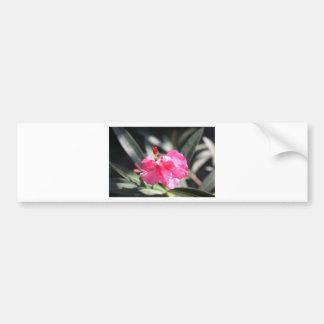 Fleur rose, Italie Adhésifs Pour Voiture