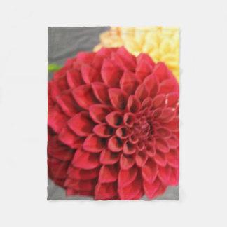 Fleur rouge de dahlia