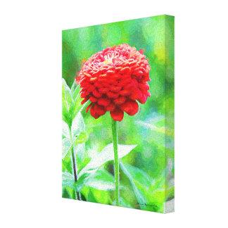 Fleur rouge de Zinnia Toile
