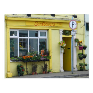 Fleuriste dans le birr - Irlande Cartes Postales
