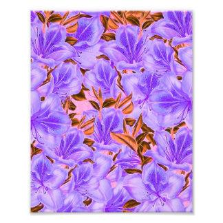 Fleurs abstraites de lavande photographies d'art