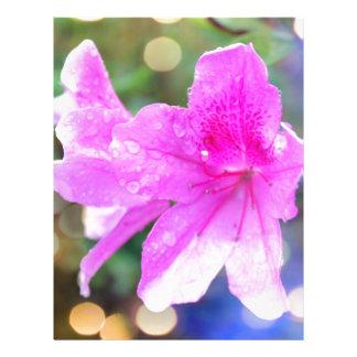 fleurs assez roses de jardin. photo botanique prospectus personnalisés