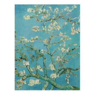 Fleurs d'amande par Vincent van Gogh Carte Postale