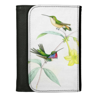 Fleurs d'animaux de faune d'oiseaux de colibri