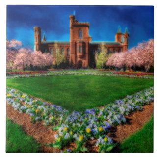 Fleurs de cerisier de jardin de château de carreau