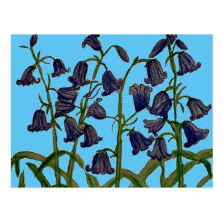 Fleurs de jacinthe des bois sur des cartes