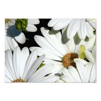 Fleurs de marguerite blanche carton d'invitation 8,89 cm x 12,70 cm