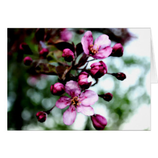 Fleurs de pomme sauvage dans la carte de note de