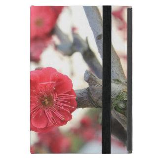 fleurs de rose de ressort de fleur de prune étui iPad mini