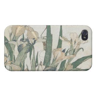 Fleurs d'iris et sauterelle, c.1830-31 étuis iPhone 4