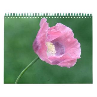 Fleurs, paysages et calendrier de faune