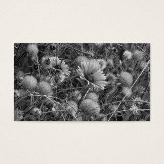 fleurs sauvages dans le blanc de black& cartes de visite