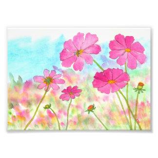 Fleurs sauvages d'art de cosmos floral abstrait de photographie d'art
