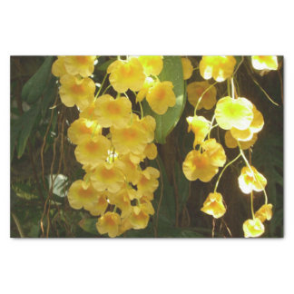 Fleurs tropicales accrochantes d'orchidées jaunes papier mousseline