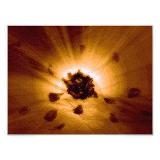 Flower power photo d'art