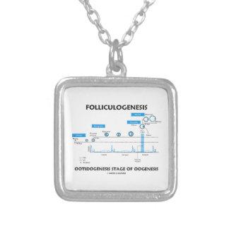 Folliculogenesis Ootidogenesis d'Oogenesis Collier