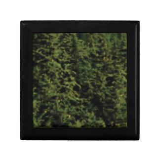 forêt verte épaisse boîte à souvenirs