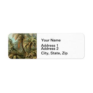 Fougères vintages et palmier botaniques étiquette d'adresse retour