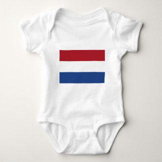 Fourgon Nederland - drapeau de Vlag de Pays-Bas Body
