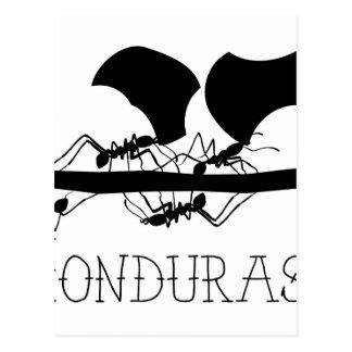 Fourmis Honduras de Leafcutter Carte Postale