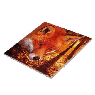 Fox rouge carreau