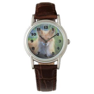 Fox rouge s'étendant dans l'image de faune d'herbe montres bracelet