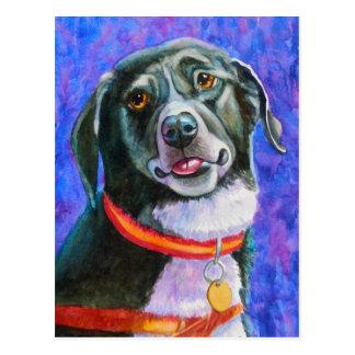 Framboise de chien noir carte postale