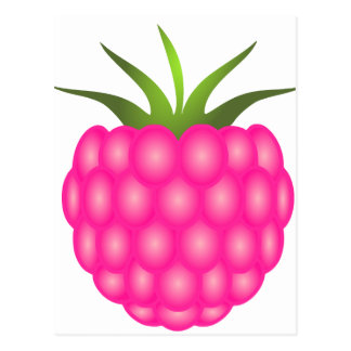 Framboise ou juste baie rose carte postale