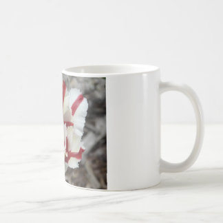 frange de tulipe, rouge et blanche mug