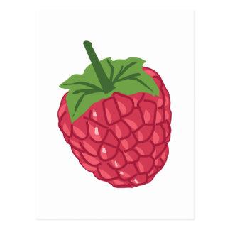 Fruit de framboise carte postale
