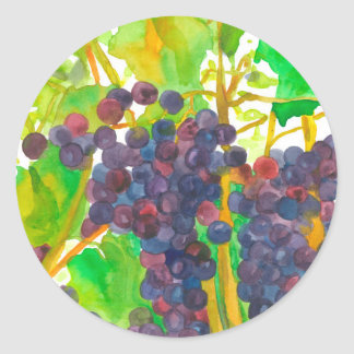 Fruit de raisins d'aquarelle sticker rond
