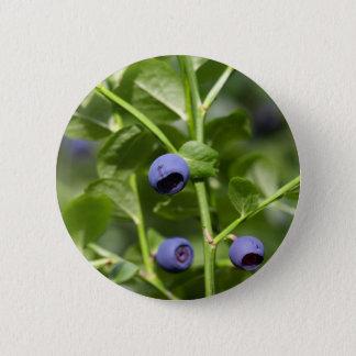 Fruits de la myrtille européenne badge rond 5 cm