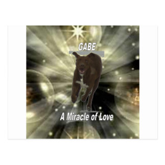 Gabe, un miracle de l'amour carte postale