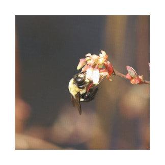 Gaffez l'abeille, copie enveloppée de toile