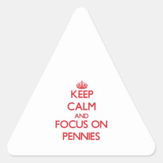 Gardez le calme et le foyer sur des penny sticker en triangle