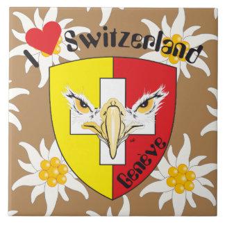 Genève/Genève Suisse Svizzera carreau de Suisse