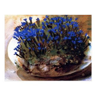 Gentianes de bleu de Sargent- de chanteur de John Carte Postale