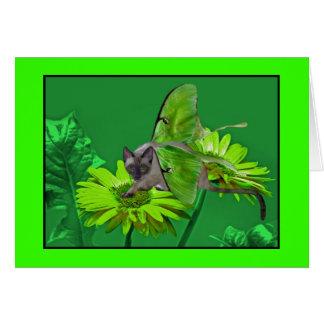 Gerbera vert vibrant de chat de Luna Carte